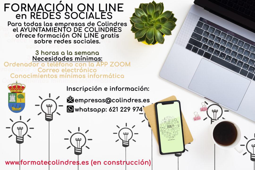 formacion online empresas