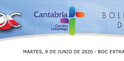 Convocatoria de subvenciones al sector de distribución comercial minorista de Cantabria (Orden INN/4/2020).